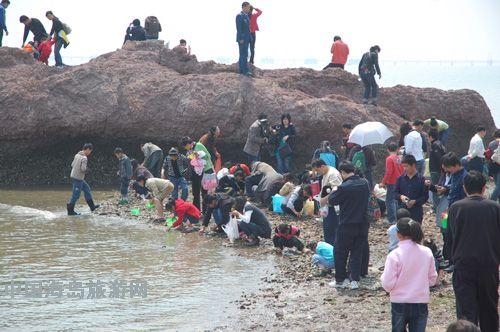 滩开发建设红岛赶海观光园